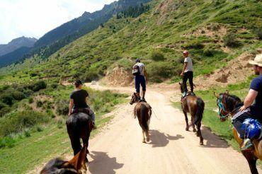 Kyrgyzstan travel, horses