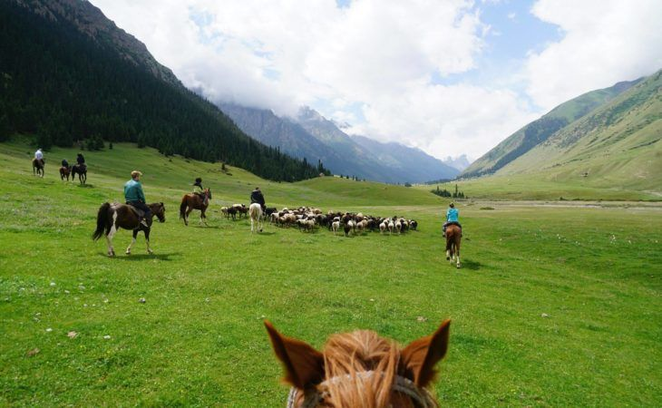 Nomad University in Kyrgyzstan group tour