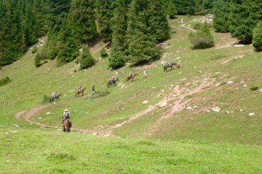 Riding horse Kyrgyzstan