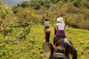 Horse Riding in Apple Fields near Almaty kazakhstan