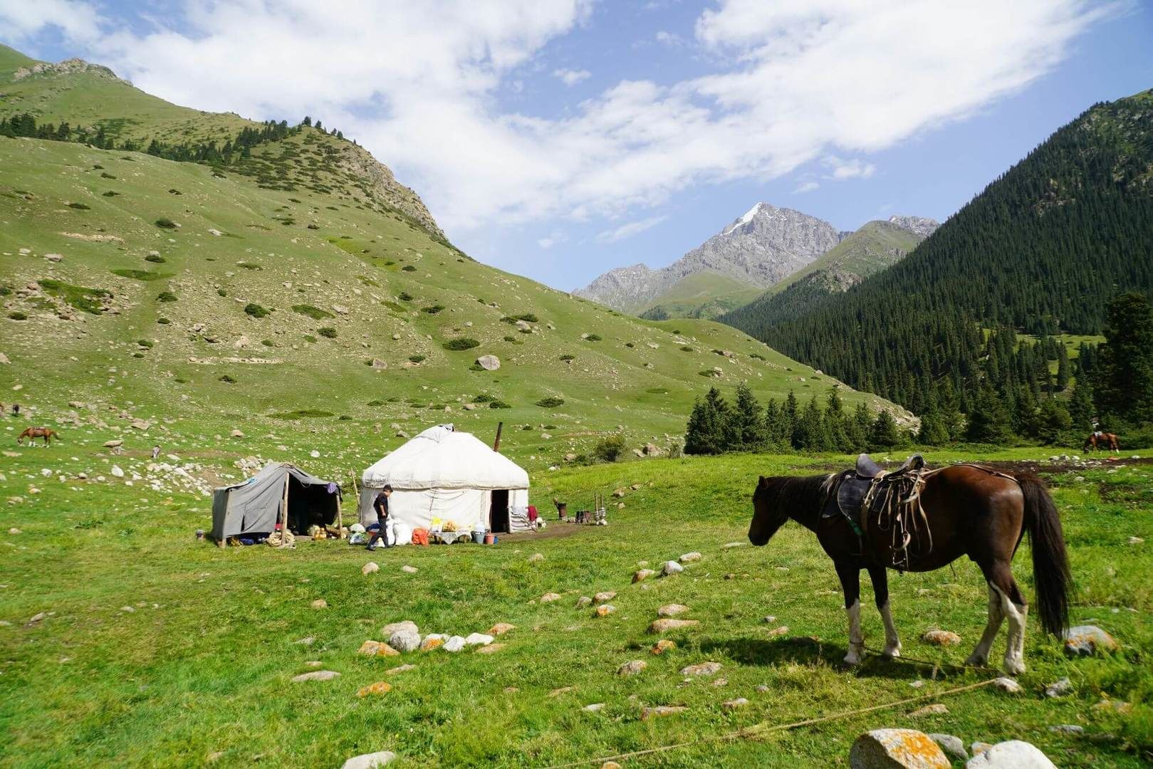 Horse in front of yurt in Kyrgyz mountain pasture in Kyrgyzstan & Kazakhstan Tour