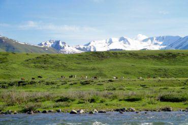 Summer pastures Kyrgyzstan tourism
