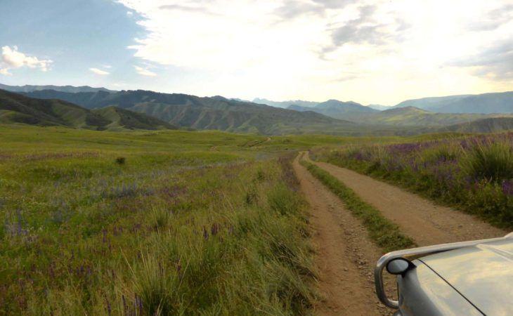 Driving in Steppe in Almaty Region Backroad-kazakhstan travel