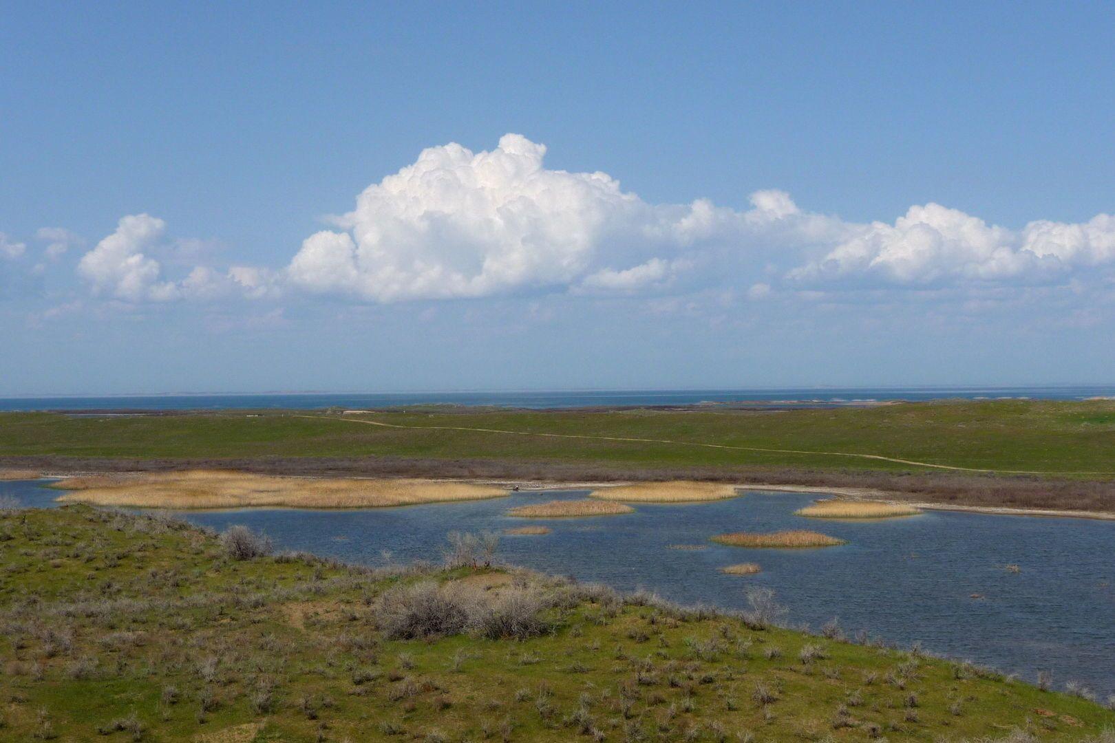 aydarkul- desert lake in Uzbekistan holidays