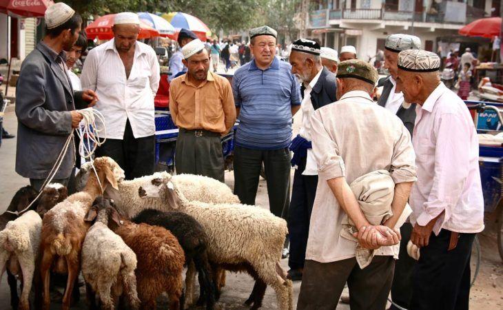 animal market in Kashgar, china