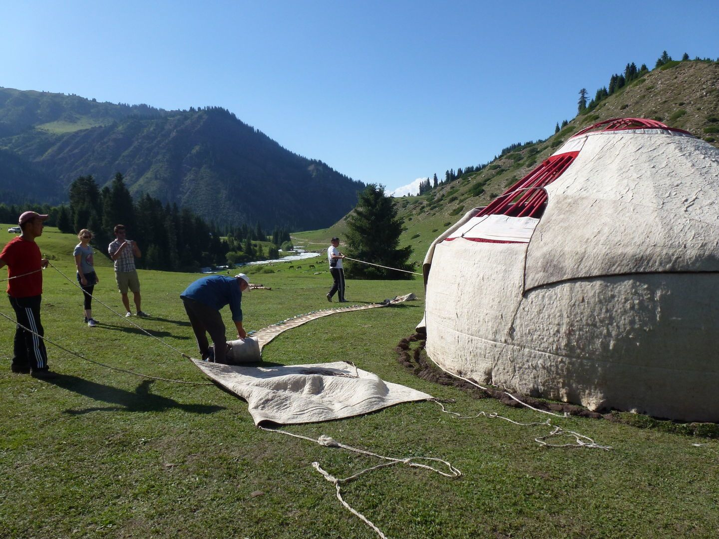 layering the yurt structure with wool felt