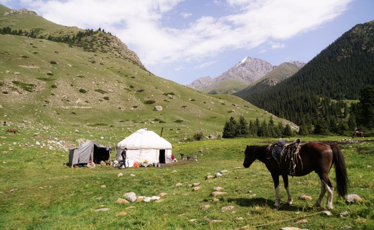 Horse in front of a yurt in Kyrgyzstan