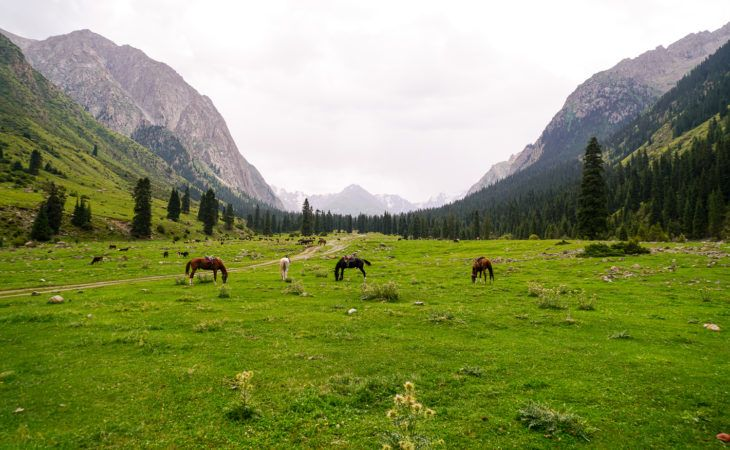 Altyn Arashan Trekking Kyrgyzstan top things to do