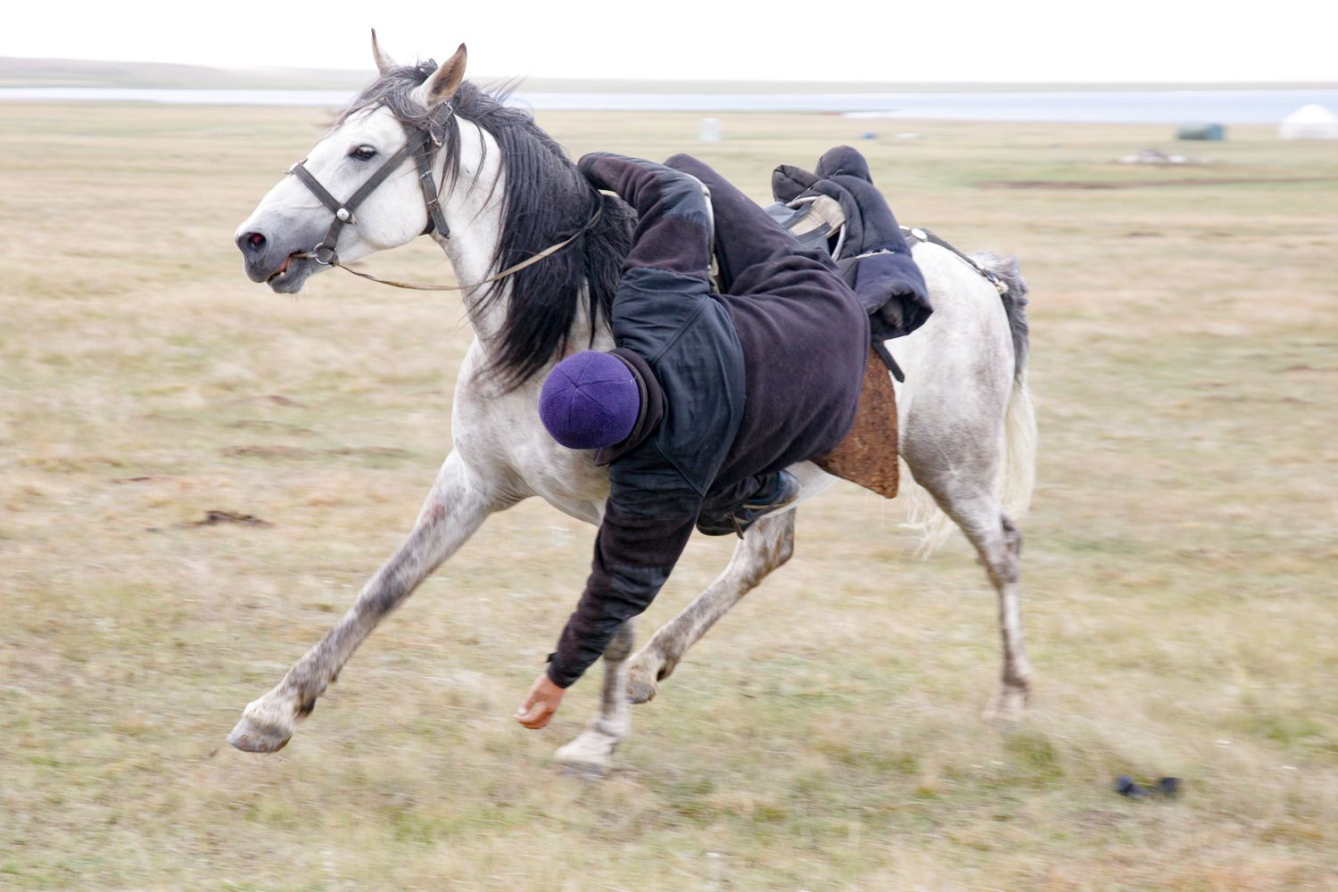 A boy on a horse playing nomad games in Kyrgyzstan & Kazakhstan Tour